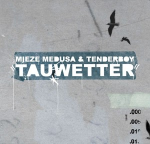 tauwetter_preview